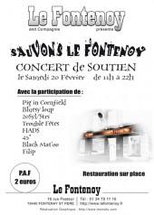 sauvonslefontenoy-2010